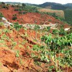 15 ha đất trồng cà phê ở Lâm Đồng bỗng nhiên bị sụt lún